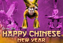 chinesischer nationalcircus happy chinese new year